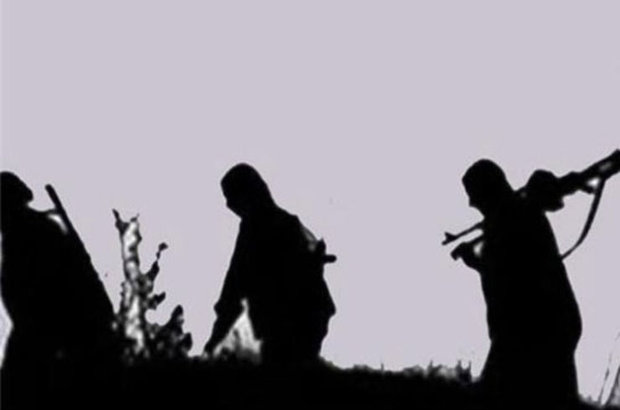 Bitlis, Hizan, 1 terörist öldürüldü