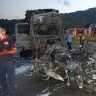 Adana'da zincirleme trafik kazası: 5 ölü, 7 yaralı