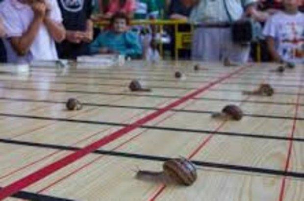 İspanya, Salyangoz yarışları