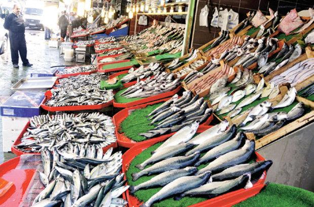 av yasağı, balık, palamut, istavrit