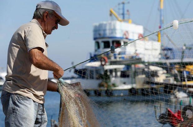 Balıkçılar, Gıda, Tarım ve Hayvancılık Bakanlığı, TÜİK, Balık sezonu