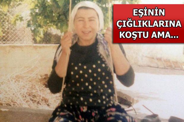 Aydın,Nezahat Çetin,cinsel taçiz,bolyozla öldürdü,