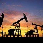 Petrol arama ve işletme ruhsatları kararları