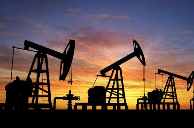 Enerji ve Tabii Kaynaklar Bakanlığı, Petrol arama kararı, Enerji