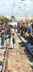 Alman bakan: Türkiye'de mülteci dağıtım kampları kurulsun
