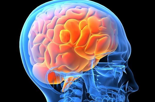Parkinson beyin hücrelerini yakıyor