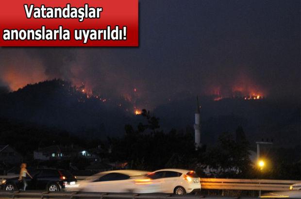 Bursa, Orman yangını