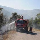 Zonguldak'ta korkutan orman yangınları