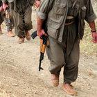 PKK'lılar Hakkari'nin Yüksekova ilçesi'nde AK Parti belde başkanını kaçırdı