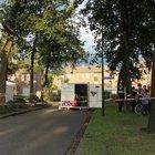 Hollanda'da üç Türk evlerinde ölü bulundu
