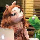 Kurbağa Kermit'in yeni sevgilisine hayranlarından tepki yağdı