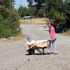 Sokağa el arabasıyla çıkabilen Naciye Menteşe yardım bekliyor