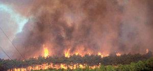 50 hektar kül oldu, sabotaj soruşturması başlatıldı