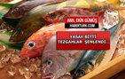 Hangi balığın neye faydası var? Çocuğunuz hangi balığı yemeli?