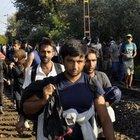 Binlerce göçmen Budapeşte'den Viyana'ya yola çıktı!