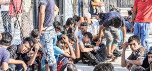 Çanakkale'de 168 kaçak ihbarla yakalandı