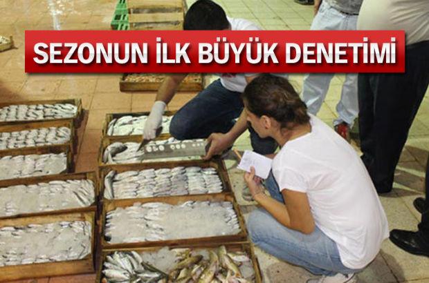 2 bin 300 kilogram balığa el konuldu...