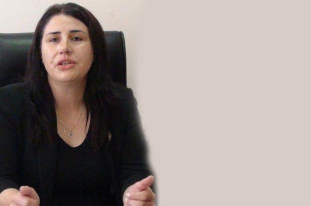 PKK'ya gıda götürdüğü iddia edilen araçtan HDP'li vekil çıktı