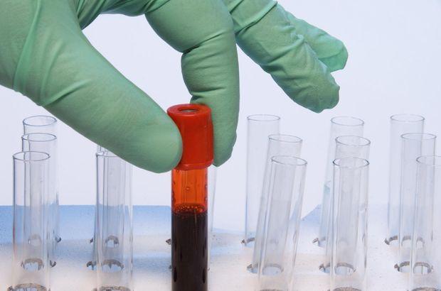 Biyolojik Yaş Haberleri Güncel Biyolojik Yaş Haberleri Ve Biyolojik