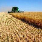 Ziraat Bankası: Doğal afete maruz kalan tarımsal üreticilerin yanında olmaya devam edeceğiz