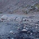 Hakkari-Çukurca Karayolu'nda iki ayrı patlama