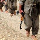 Teslim olan PKK'lıdan itiraflar