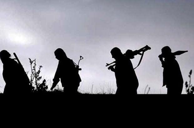 Hakkari'de terör örgütüne operasyon