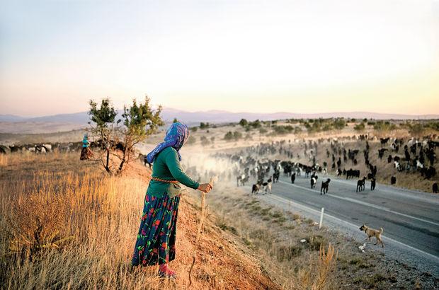 Sarıkeçili yörükler Konya'dan Mersin sahillerine inecekler