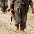 Şemdinli'de 1 PKK'lı teslim oldu