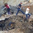 Pamukova'da 12 kamyon kimyasal atık bulundu