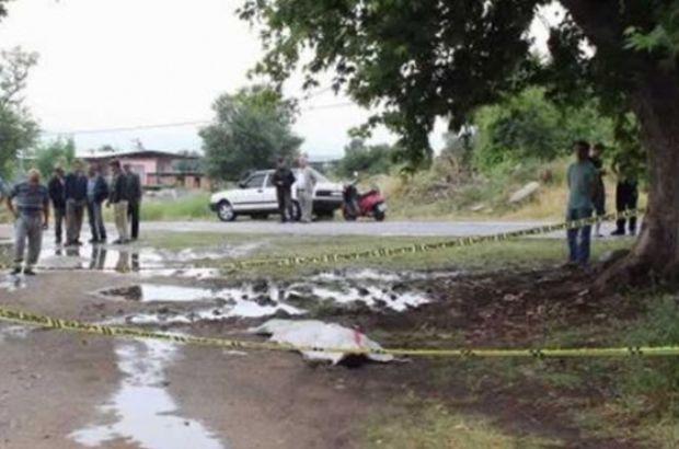Denizli'de ağaçtan düşen kişi öldü