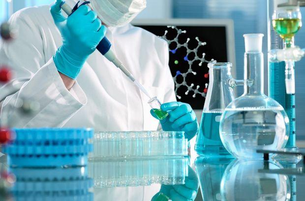 Türk bilim adamları karaciğer hücresi geliştirdi!