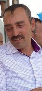 Kayseri'de arı dehşeti