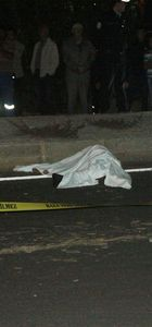 Kahramanmaraş'ta kamyonet çarpan kadın hayatını kaybetti
