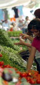 FAO Gıda Fiyat Endeksi yükseldi