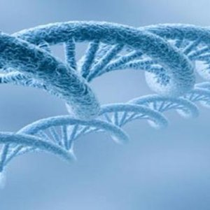 SİGARA DNA YAPISINI BOZUYOR!
