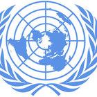 BM'den korkunç rakam: Her beş günde bir gazeteci öldürülüyor