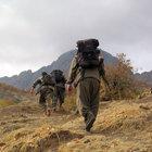 Şırnak'ta PKK'lı 10 terörist teslim oldu