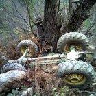 Seyir halindeki traktöre silahlı saldırı: 2 ölü