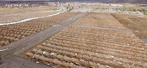 Mezarlıkta 'kış' hazırlığı; 1800 mezar hazır