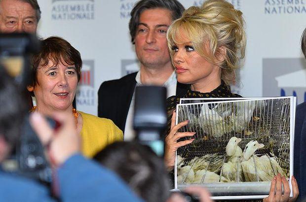 Pamela Anderson'dan Fransa'ya tepki!