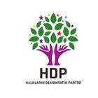 İşte Anayasa için HDP'nin olası isimleri