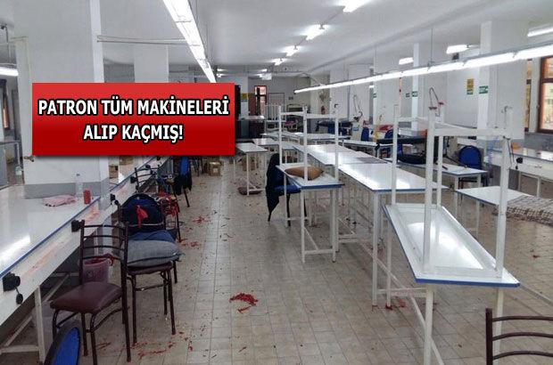 Fabrika işçileri şaşkına döndü!