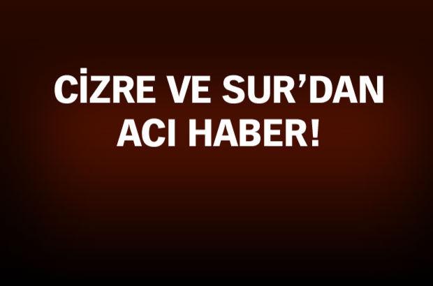 Şırnak Cizre Diyarbakır Sur şehit