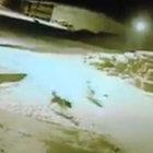 Kars'ta şehre inen aç kurtlar 5 köpeği telef etti