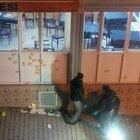 Kahvehaneyi tarayan maskeli saldırganlar yakalandı