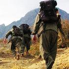 PKK'nın siparişini götürürken yakalandılar!