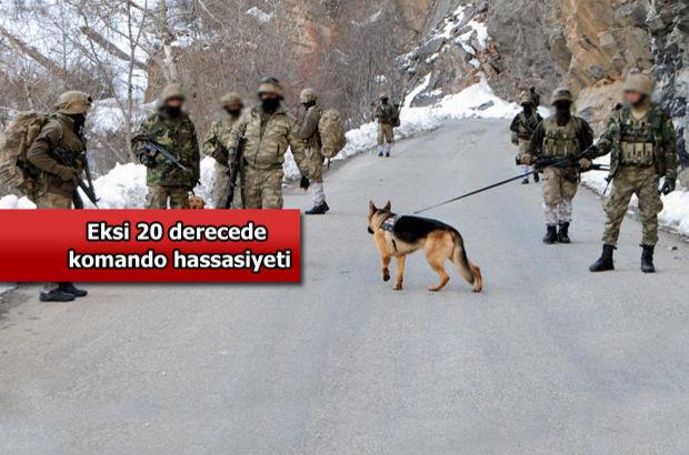 PKK'nın oyununu komandolar bozdu!