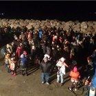 262 göçmen Yunan adalarına gitmek isterken yakalandı