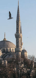 Tarihi camiler İBB'ye emanet